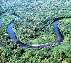 ecotur_foto_amazonia02.jpg